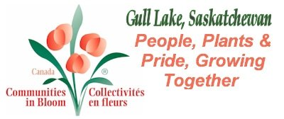 Gull Lake logo-cib_large
