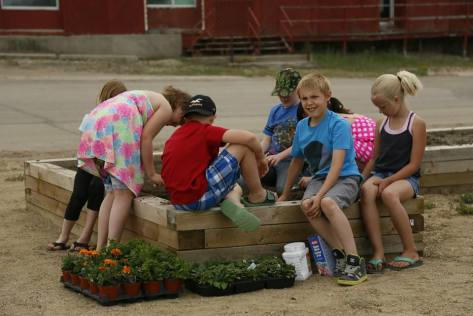 Gull Lake Grade 3 Class Plants Flowers